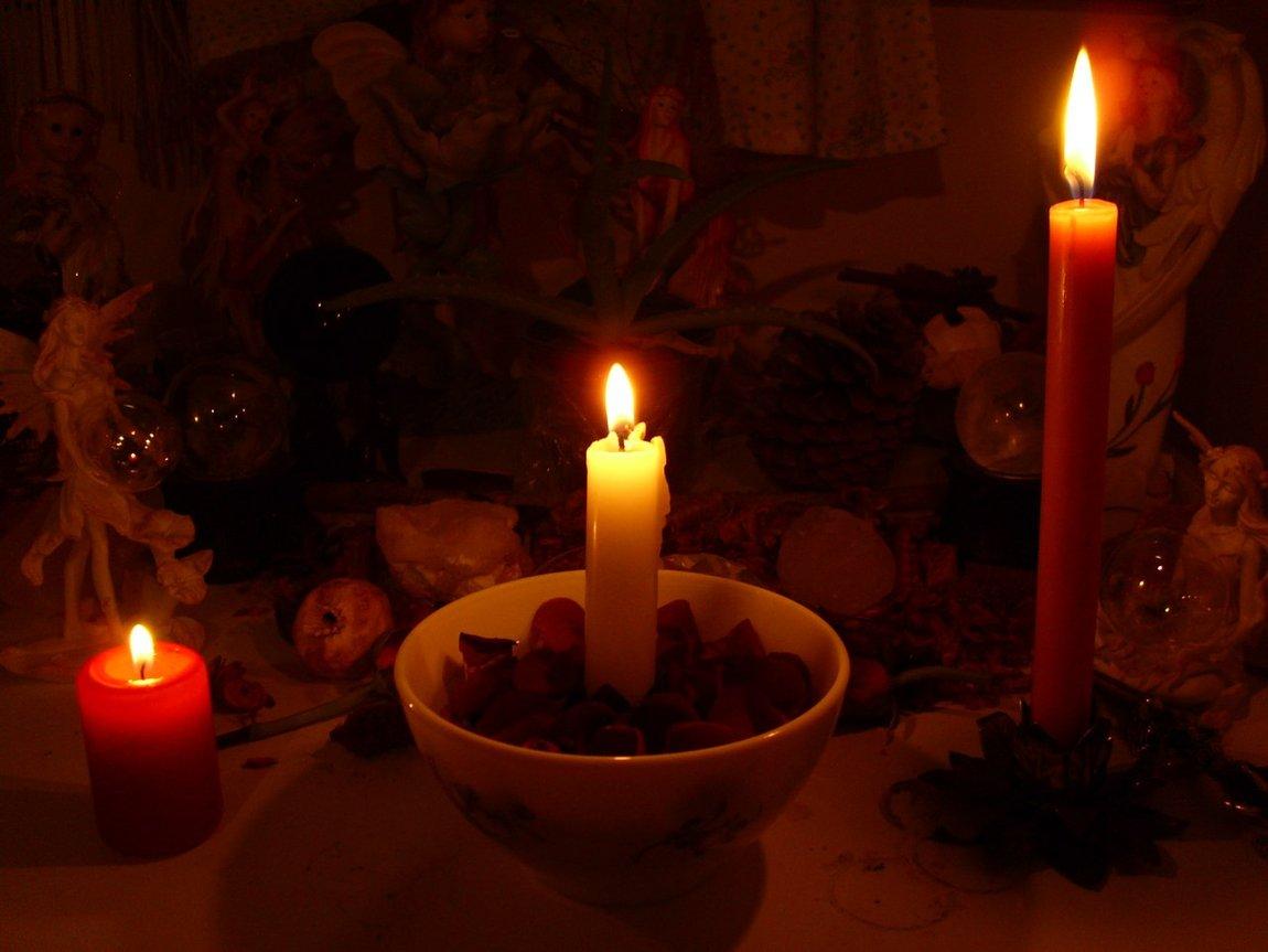 розы говорит присушка на фото и свечу перми представили